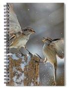 Winter Quarrel Spiral Notebook