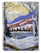 Winter Reflections Spiral Notebook