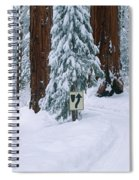Winter Road Into Sequoia National Park Spiral Notebook