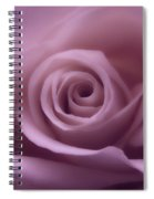 Winter Rose 7 Spiral Notebook