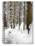 Winter Scene Print Spiral Notebook
