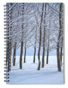 Winter Sentinels Spiral Notebook