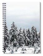 Winter Shangri-la Spiral Notebook
