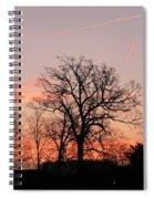 Winter Skies Spiral Notebook