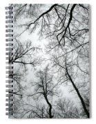 Winter Sky Spiral Notebook