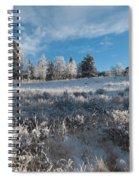 Winter Snow At Kenosha Pass Spiral Notebook