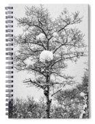 Winter Solace Spiral Notebook