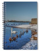 Winter Swan Lake Spiral Notebook