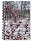 Winter Time Frozen Fruit Spiral Notebook