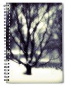 Winter Tree 3 Spiral Notebook