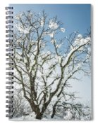 Winter Tree At Berry Summit Spiral Notebook
