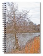 Winter Tree On Pond Shore Spiral Notebook