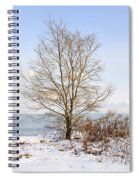 Winter Tree On Shore Spiral Notebook