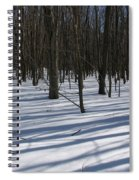 Winter Trees In Snow With Shadow Lines Spiral Notebook