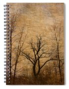 Winter Trees In The Bottomlands 2 Spiral Notebook
