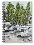 Winter Trees Spiral Notebook