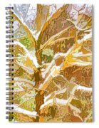 Winter Trees On Snow 2 Spiral Notebook