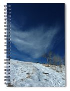 Winter Walk Spiral Notebook