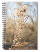 Winter Weeds Spiral Notebook
