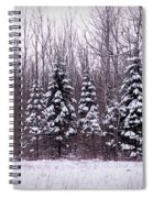 Winter White Magic Spiral Notebook