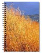 Winter Willows Spiral Notebook