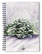 Winter Wind Spiral Notebook