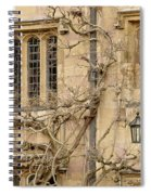 Winter Windows. Spiral Notebook