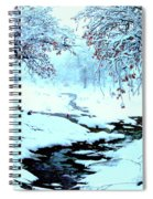 Winter Wonder Spiral Notebook