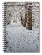 Winter Wonder Land Spiral Notebook