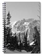 Winter Wonders 3 Spiral Notebook