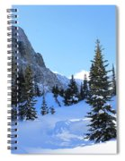 Winter Wonders Spiral Notebook
