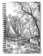 Winter Woods On A Stormy Day 2 Bw Spiral Notebook