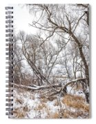 Winter Woods On A Stormy Day 2 Spiral Notebook