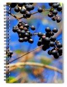 Winterberries II Spiral Notebook