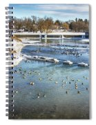 Wintering Geese Spiral Notebook