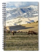 Wintering Grounds Spiral Notebook