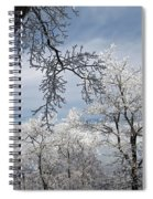 Winter's Arrival Spiral Notebook