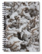 Winter's Contrast Spiral Notebook