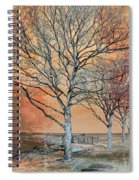 Winter's Dawn Spiral Notebook