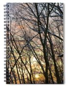 Winter's Delight Spiral Notebook