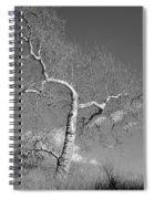 Winter's Ghost Spiral Notebook