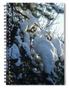 Winter's Light Spiral Notebook