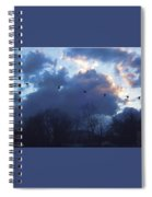 Winter's Solace Spiral Notebook