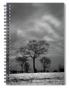 Winter's Trees  Spiral Notebook