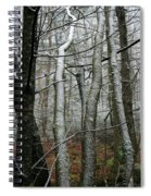 Wintery Day Spiral Notebook