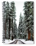 Wintry Forest Drive Spiral Notebook