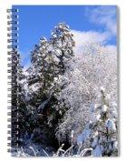 Wintry Morn Spiral Notebook