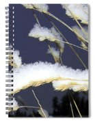 Wintry Wild Oats Spiral Notebook