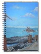 Wip- Pelican 03 Spiral Notebook