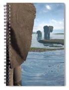 Wisdom Spiral Notebook